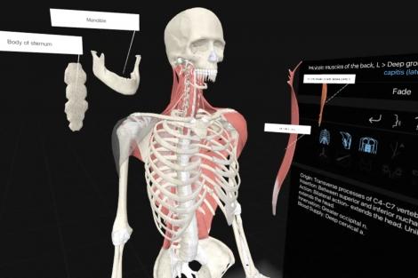 Medizin – Seite 3 – Immersive Learning News